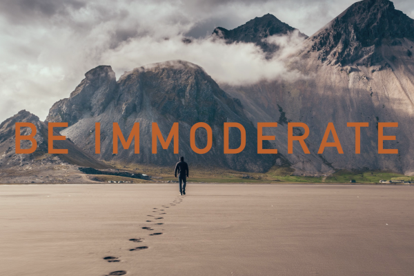 """BE IMMODERATE"" IN 2019 !"